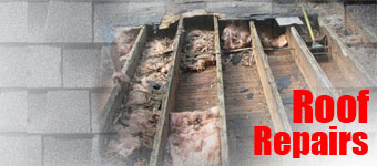 Roofing Erie Pittsburgh Pa - Roof Repairs